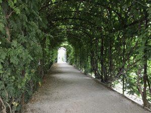 Ένας διάδρομος των κήπων του παλατιού στους οποίους μπορείτε να απολαύσετε μία βόλτα.