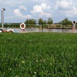 Lake Neusiedl 2